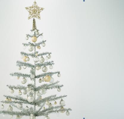 Deutscher Weihnachtsbaum.Weihnachtsbaum Vs Christbaum Neue Deutsche Rechtschreibung